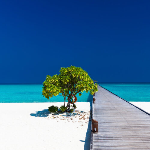 conrad-maldives-beach-wooden-walkway