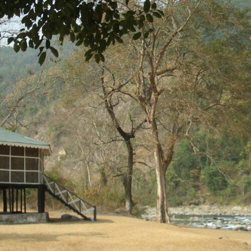 View of glenburn-tea-estate