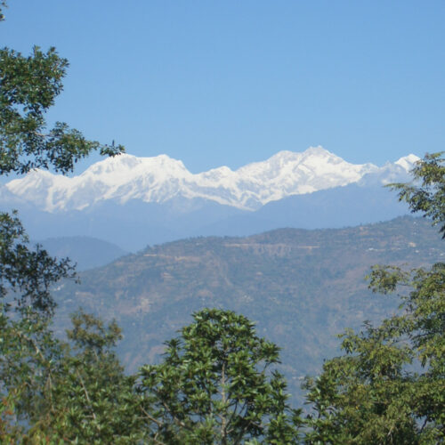 View of the Himalayas