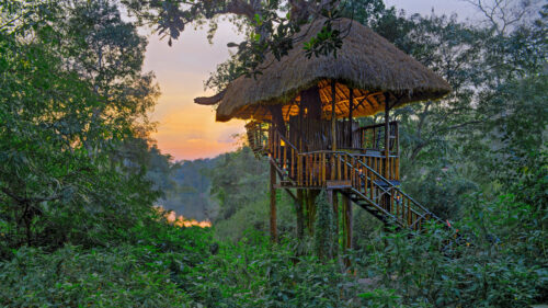 Orange County Coorg Treehouse