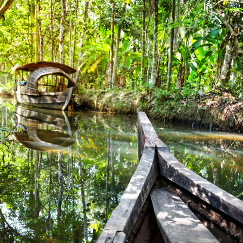 kochi-river-boat