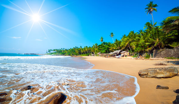greaves_sri-lanka_tropical-beach_credit-shutterstock-user-anton-gvozdikov