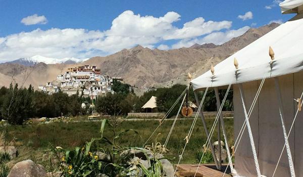 ladakh-trek-_-camp