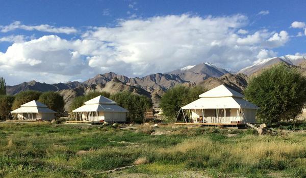 ladakh-trek-_-ultimate-travelling-camp