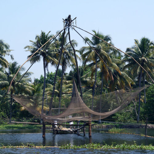 fishing at lake vembanad