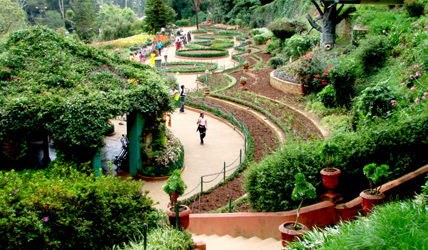Ooty is a haven of green - and its Government Botanical Gardens are some of the most beautiful in India © Adam Jones/Flickr