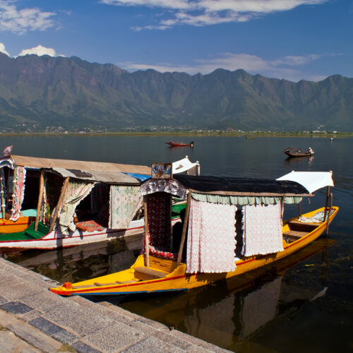 Shikara boats