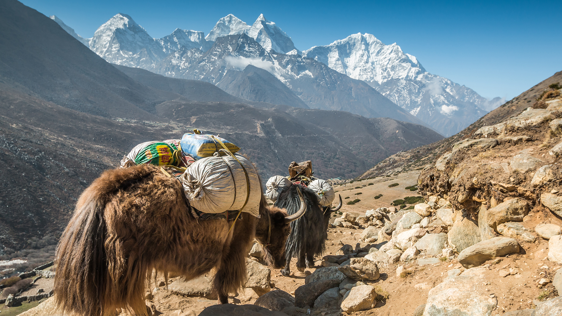 Yak And Yeti Nepal Kathmandu ⋆ Hotel ⋆ Greaves India